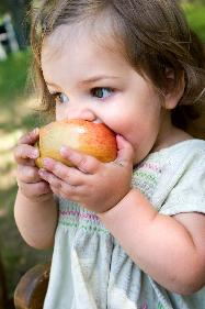 Food plays an important part in your child's health